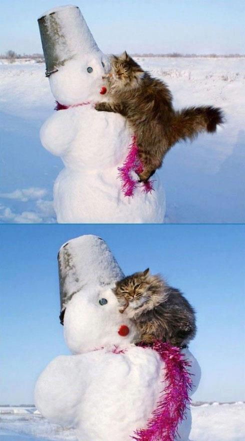 Cat and Snowman