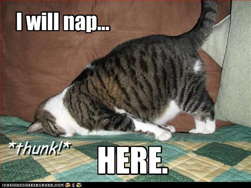 nap here