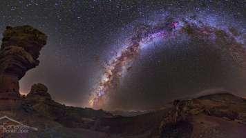 Milky Way and Stone Tree