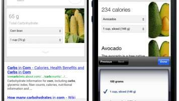Nutrition Search for corn and avocados