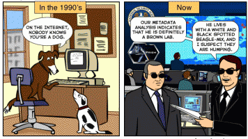 dogs on the internet