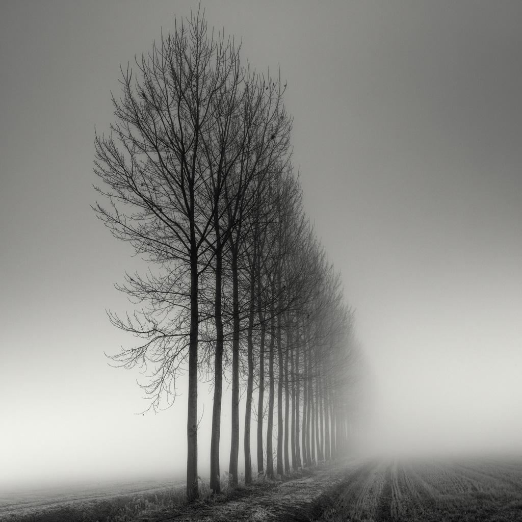 silent symmetry 8 black and white landscape photos. Black Bedroom Furniture Sets. Home Design Ideas