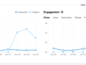 LinkedIn page analytics company updates