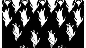 penguin illusion