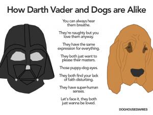 Darth Vader vs. dogs