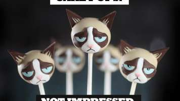 "Collection of Grumpy Cat Cake Pops with the caption ""cap pops. not impressed"""