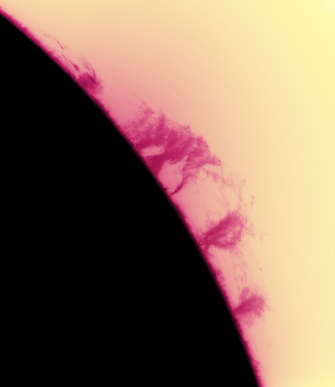 Black Sun with Pink Prominences