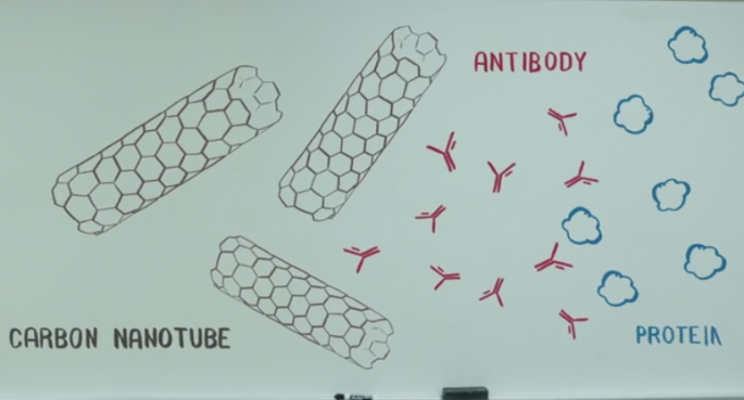 nanotubes and antibodys