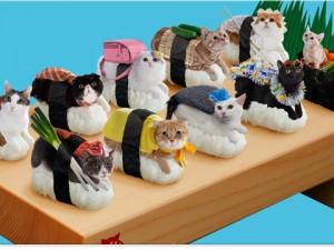 Sushi cat lineup