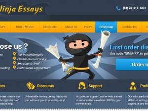 Essay writing service NinjaEssays