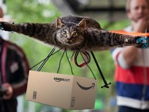 reddit cat drone