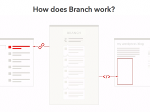 How Does Branch Work screenshot