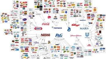 6 corporation control