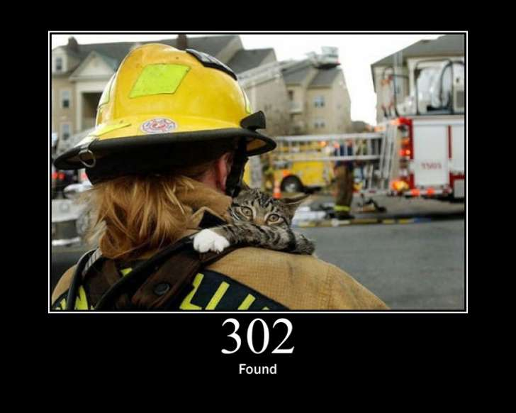302 error found cat