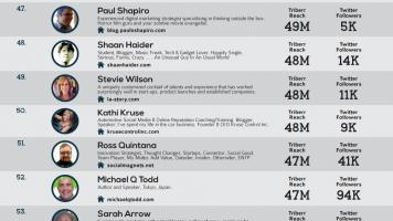 Triberr Bloggers Infographic