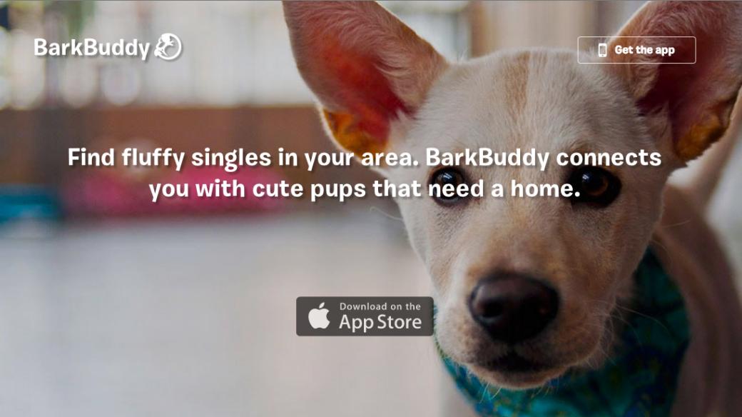 BarkBuddy homepage