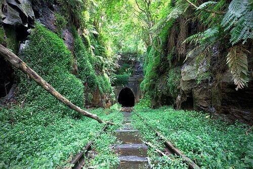 Abandoned railway, France