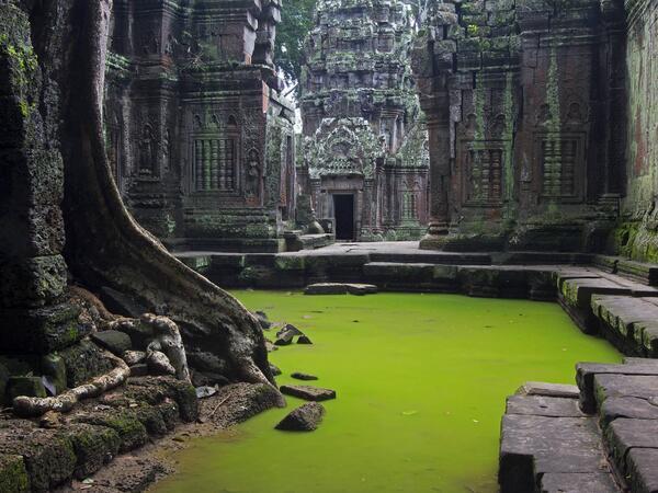 abandoned Ta Prohm Temple